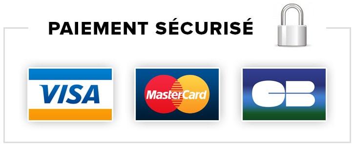 paiement sécurisé - visa, master card, carte bleue v